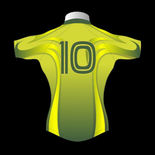 Bespoke Rugby Tour Shirt TRS 303 Back - Badger Rugby